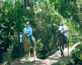 Costa Rica adventure travel: use the traditional modes of transport, including horseback.