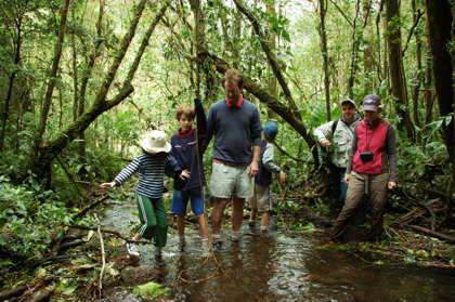 Family Hiking Through Bubbling Creek In Cloud Forest