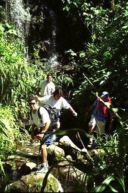 One kind of hiking — where the mission is to see the waterfalls, and birds, and lizards and other critters, and stay cool and hot at the same time. Shown here is one of Serendipity's private hiking places near Turrialba.