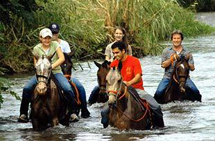 Swimming with horses in Costa Rica river